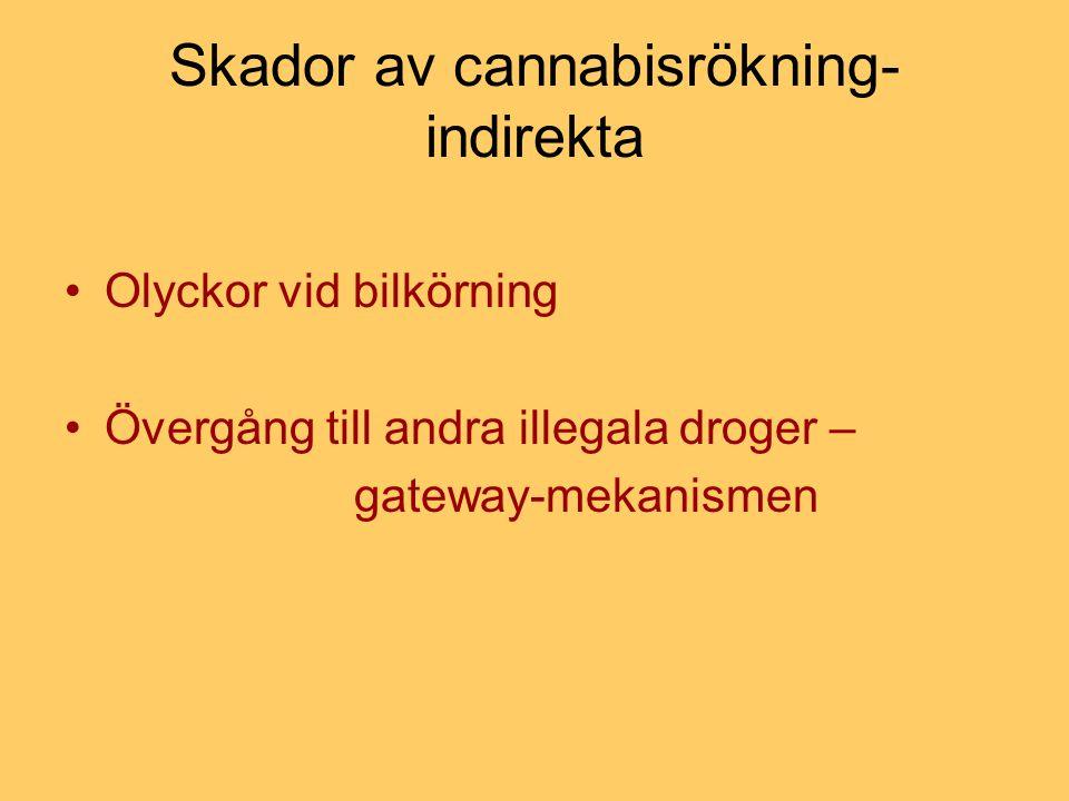 Cannabis och psykiska sjukdomar - Cannabis och den psykotiska sfären - Ångesttillstånd och depersonalisationssyndrom.