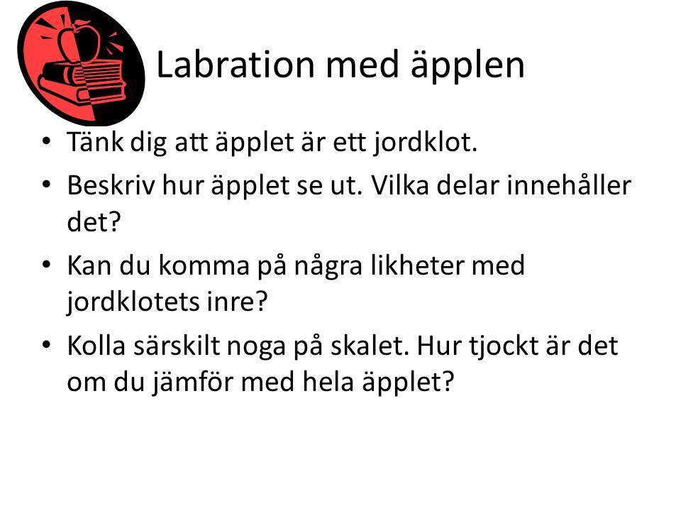 Labration med äpplen Tänk dig att äpplet är ett jordklot. Beskriv hur äpplet se ut. Vilka delar innehåller det? Kan du komma på några likheter med jor