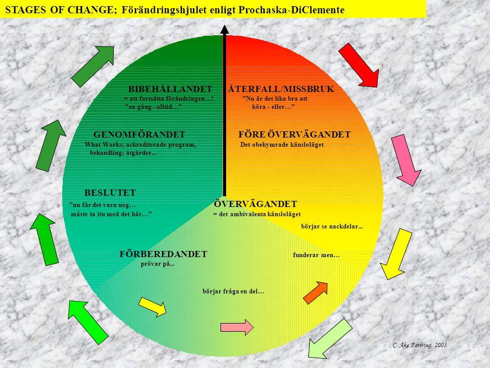 Liten illustration av strategival i relation till förändringsstadierna enligt Prochaska & DiClemente stöt inte bort klienten; skapa förtroendefull relation; försök locka fram något som klienten ser som problem med sin livsstil; försök locka fram anhörigs bekymmer över situationen; få klienten att utveckla problemsyn; förmedla att ambivalens är naturligt; hjälp klienten att väga för och emot; ställ nuvarande livsstil mot värderingar; försök få klienten att uttala tillit till självkompetens; försök få klienten att utforska fördelar med förändring; locka fram förhoppning på behandling; betona klientens fria vilja och eget ansvar för framtida val; försök locka fram uttalanden som syftar till förändring; summera - med tonvikt på uttalanden som innehåller förhoppningar och avsikt att förändra; be klienten berätta om när det fungerat tidigare och vad man kan lära av det; om klienten tillåter - erbjud råd, meny; what works-program; förhandla plan