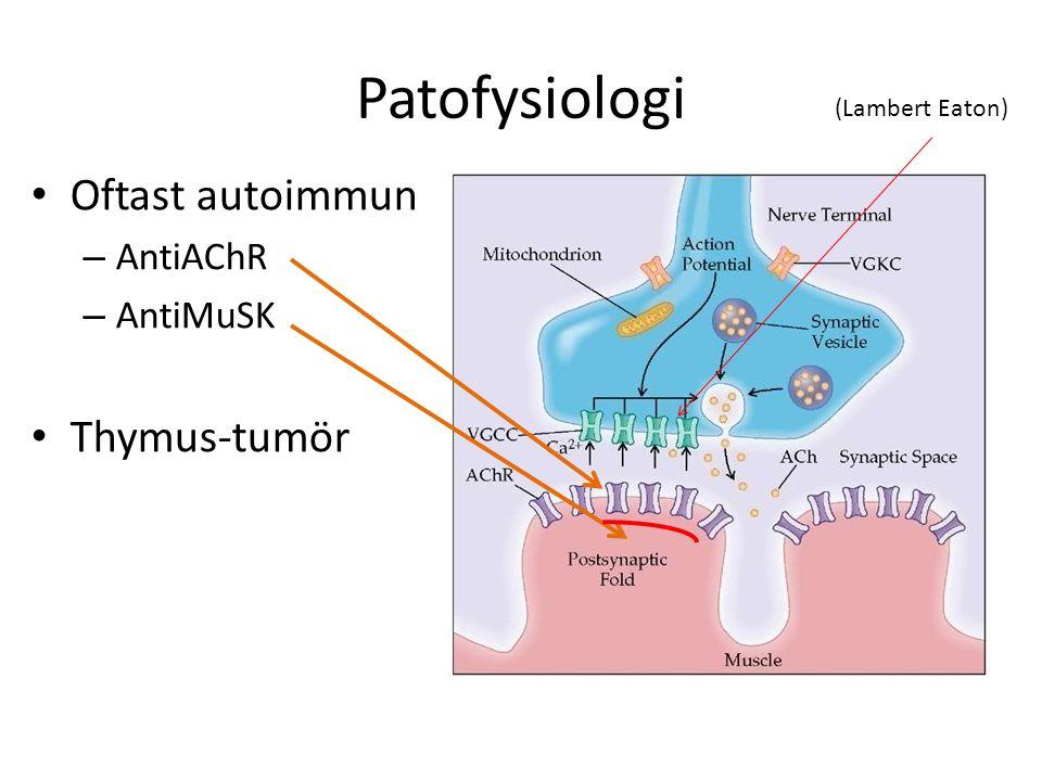 Farmakologi Acetylcholinesterashämmare (perifert verkande kvartär amin) Pyridostigmin (Mestinon  ) - Reducerar reversibelt elimineringen av acetylcholine och ökar sannolikheten att cholinerga receptorer aktiveras av Ach.