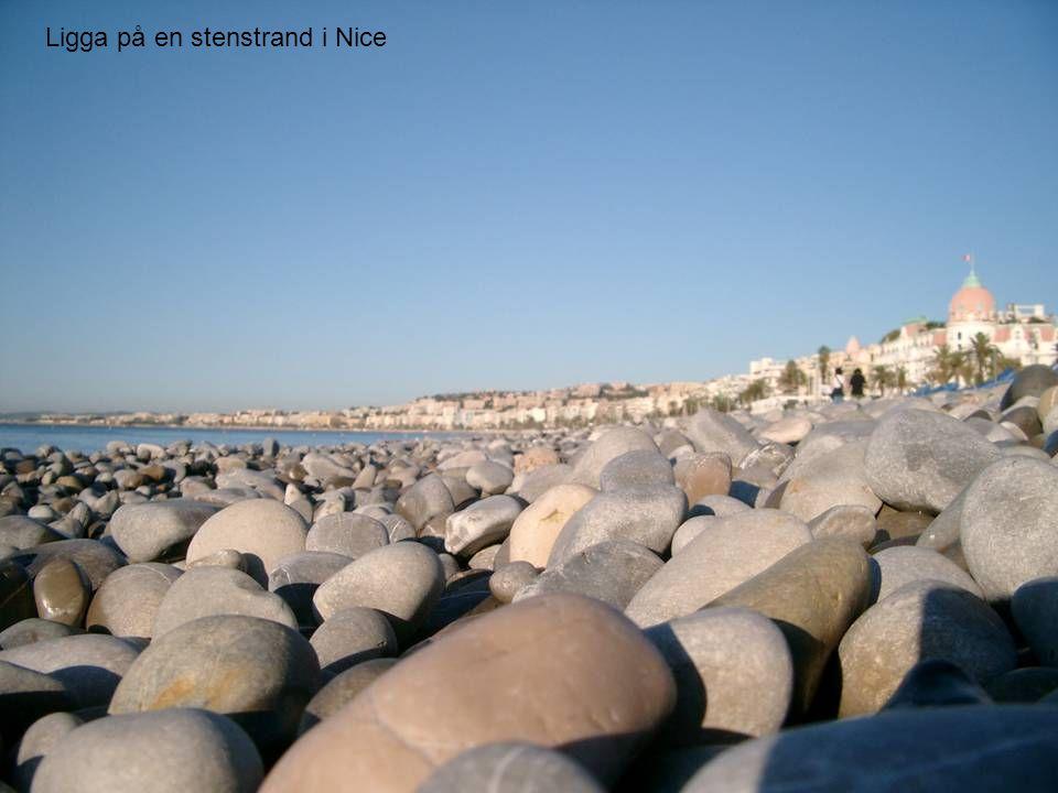 Stenstrand i NiceLigga på en stenstrand i Nice