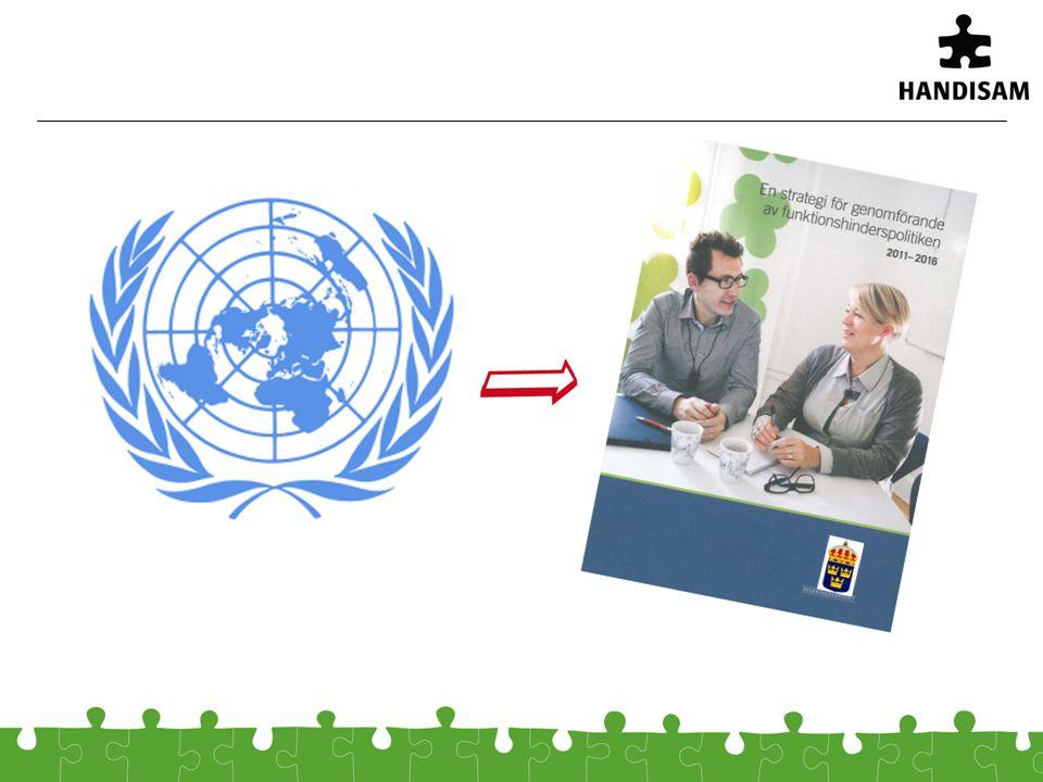 Ledstjärna – för arbetet Funktionshindersperspektivet måste vara en integrerad del av planering, genomförande och utvärdering av olika insatser.
