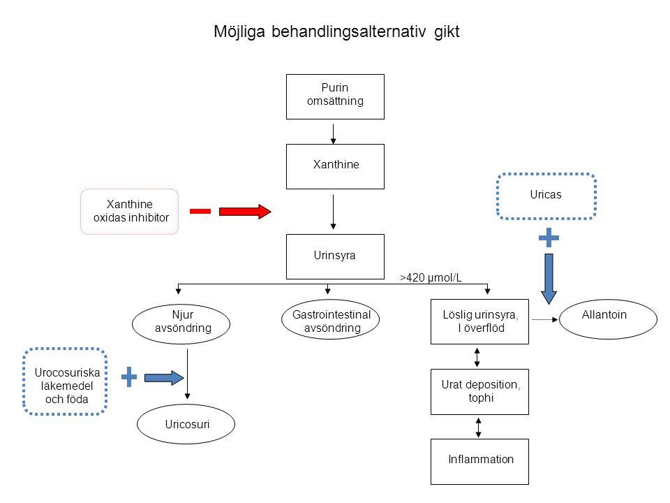 Möjliga behandlingsalternativ gikt Purin omsättning Xanthine Urinsyra Njur avsöndring Uricosuri Xanthine oxidas inhibitor Uricas Löslig urinsyra, I öv