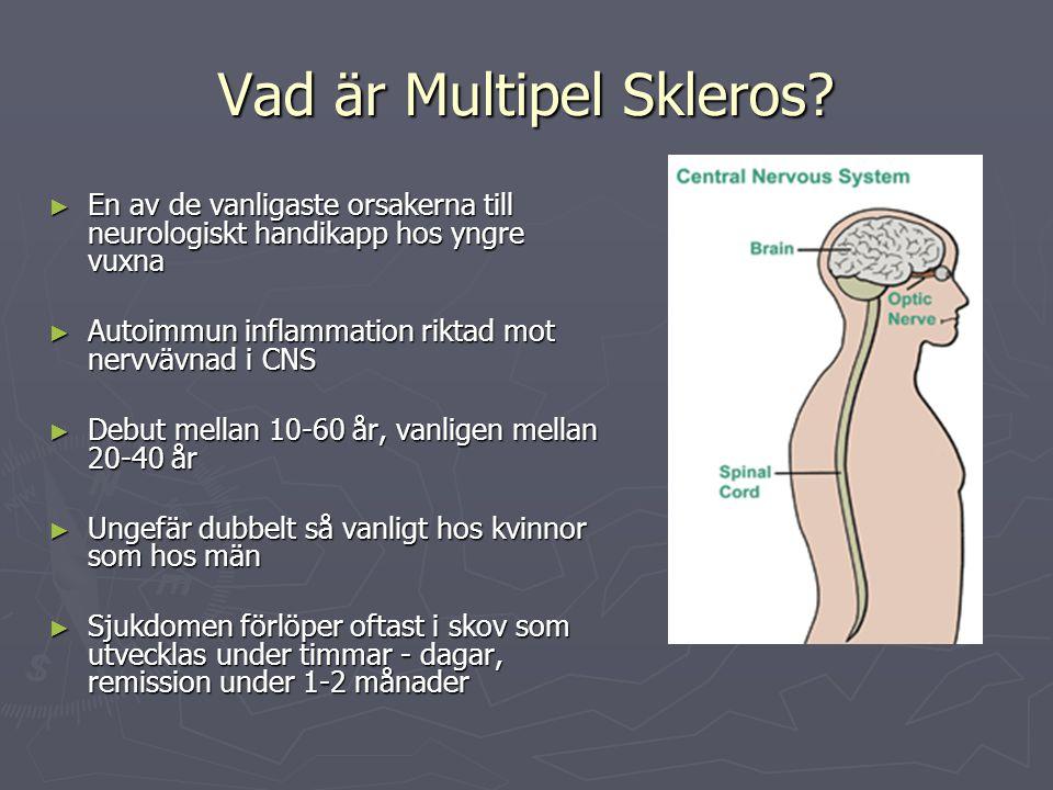 Vad är Multipel Skleros? ► En av de vanligaste orsakerna till neurologiskt handikapp hos yngre vuxna ► Autoimmun inflammation riktad mot nervvävnad i