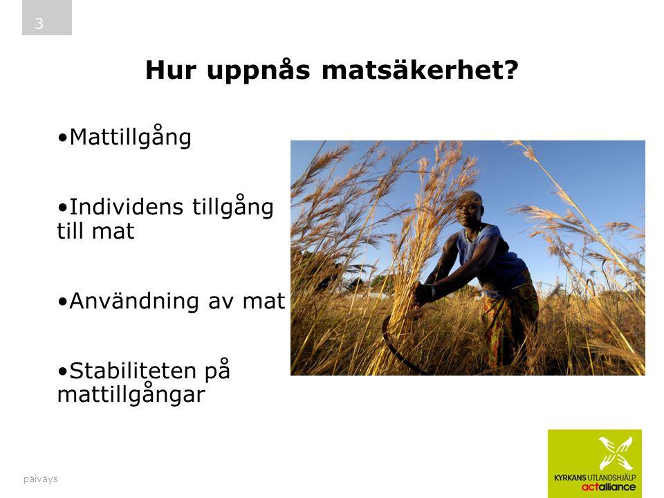 Hur uppnås matsäkerhet? päiväys 3 Mattillgång Individens tillgång till mat Användning av mat Stabiliteten på mattillgångar