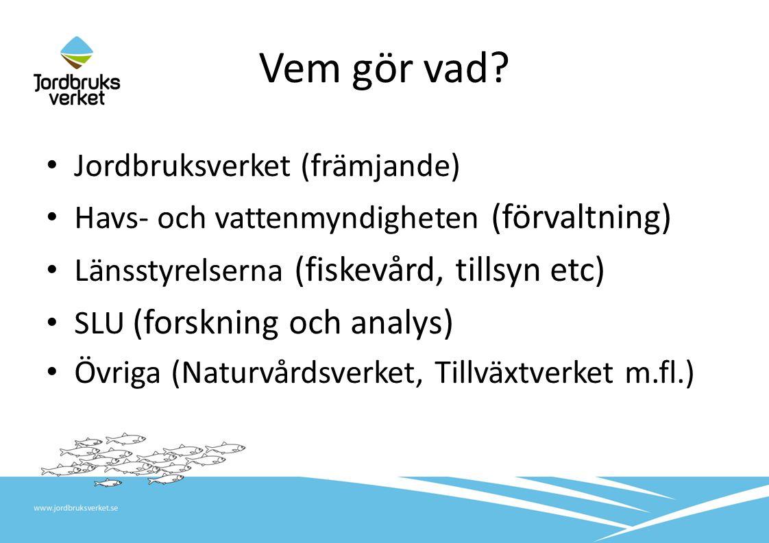 Fiskerienheten på Jordbruksverket Nytt uppdrag sedan 2011-07-01 Fritidsfiske Fisketurism Vattenbruk Långsiktigt hållbart yrkesfiske Ca 20 medarbetare Stödhantering inom Europeiska Fiskerifonden (EFF) FRÄMJANDE!
