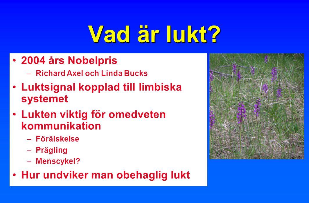 Vad är lukt? 2004 års Nobelpris –Richard Axel och Linda Bucks Luktsignal kopplad till limbiska systemet Lukten viktig för omedveten kommunikation –För