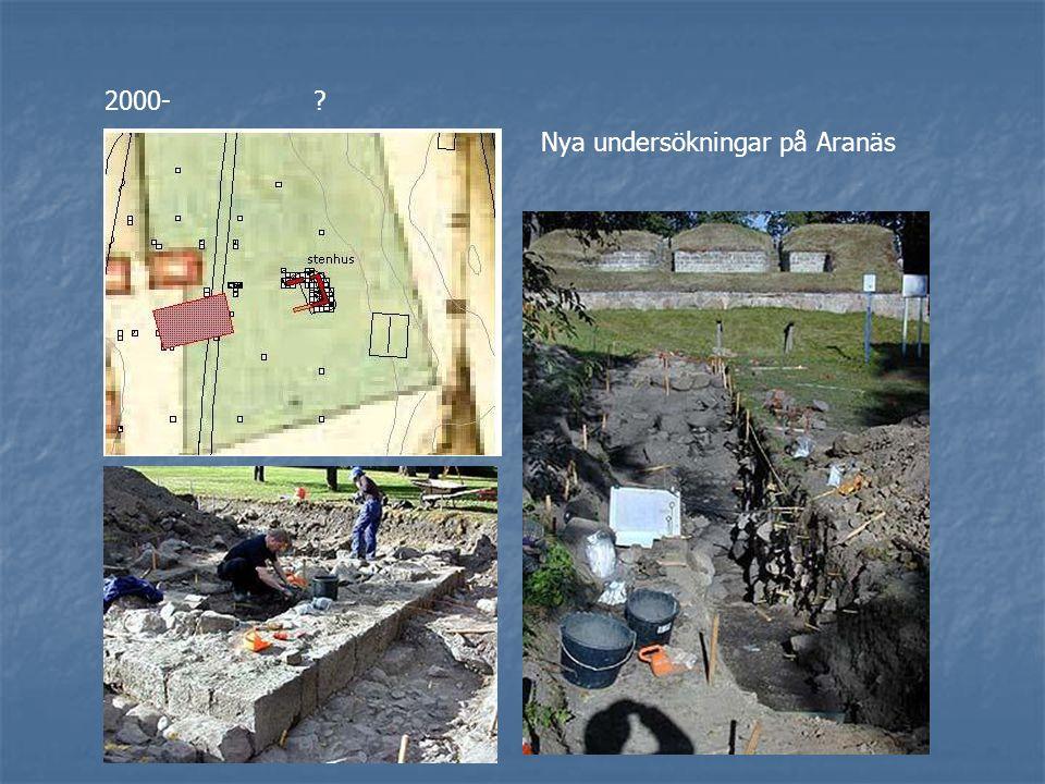 2000-? Nya undersökningar på Aranäs