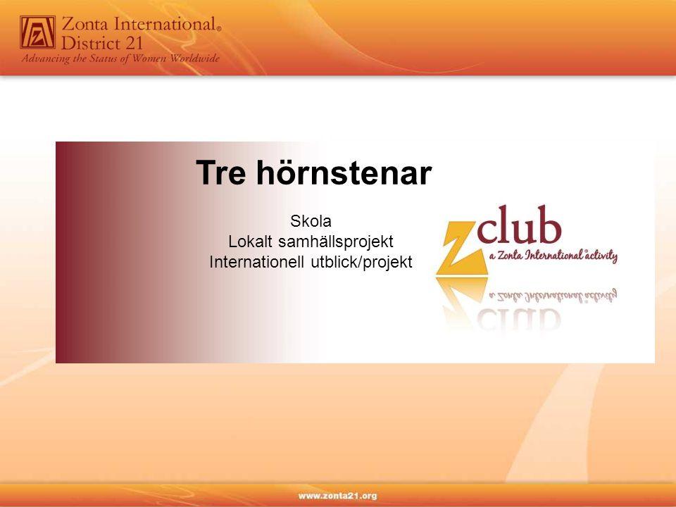 Skola Lokalt samhällsprojekt Internationell utblick/projekt Tre hörnstenar