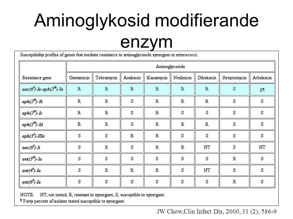 Aminoglykosid modifierande enzym JW Chow,Clin Infect Dis, 2000, 31 (2), 586-9