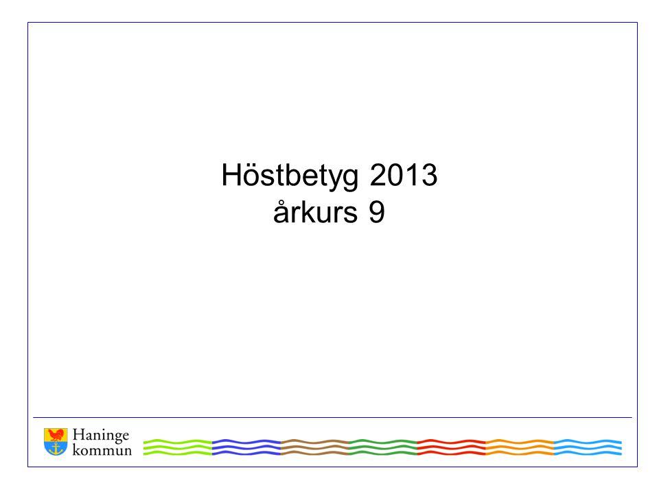 Höstbetyg 2013 årkurs 9