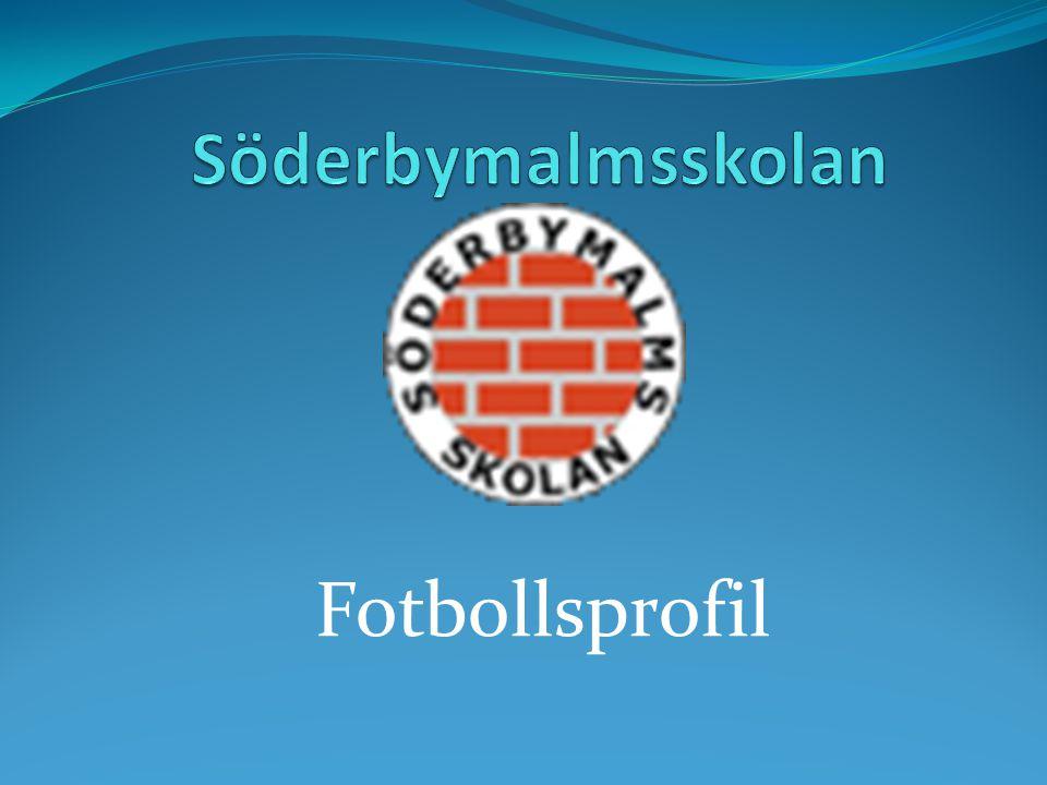 Fotbollsprofil