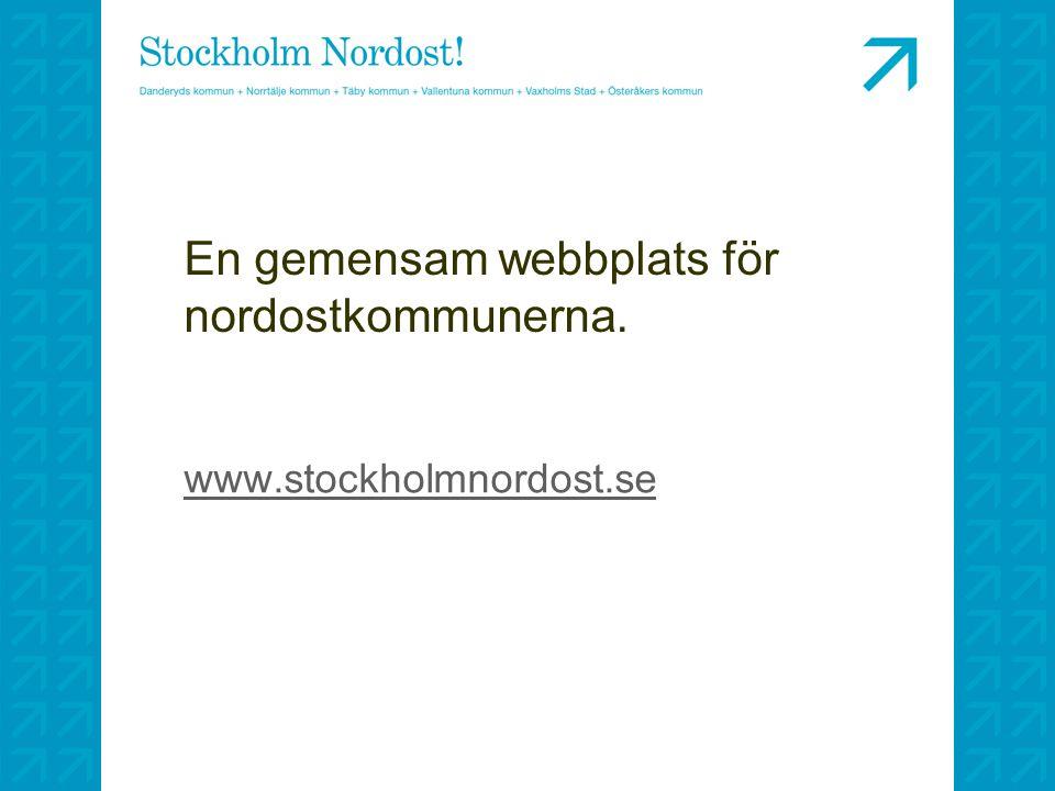 En gemensam webbplats för nordostkommunerna. www.stockholmnordost.se