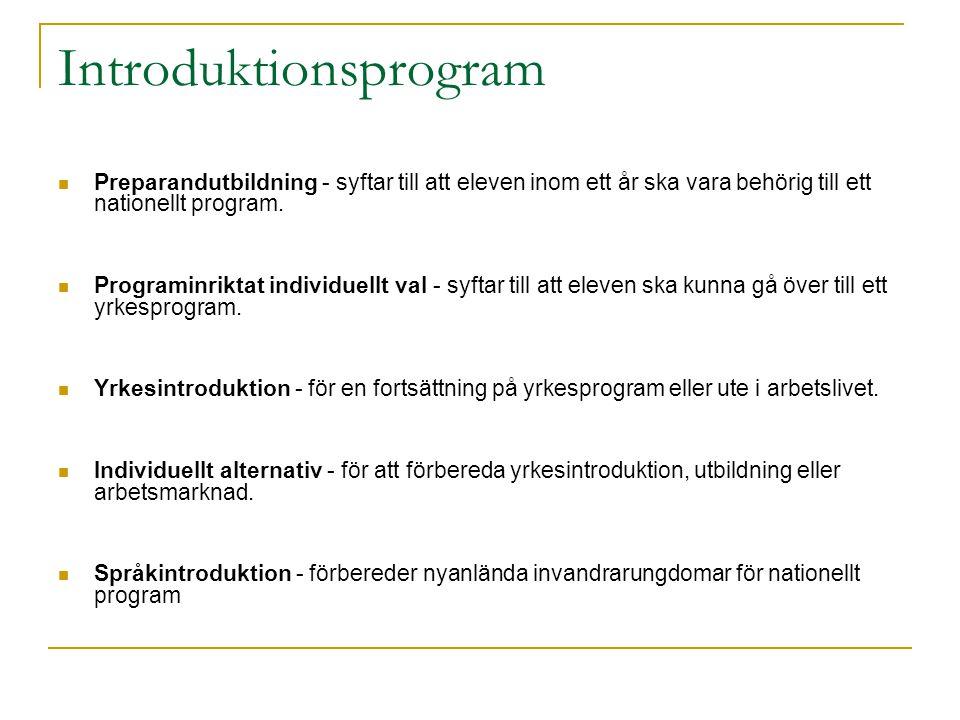 Introduktionsprogram Preparandutbildning - syftar till att eleven inom ett år ska vara behörig till ett nationellt program. Programinriktat individuel