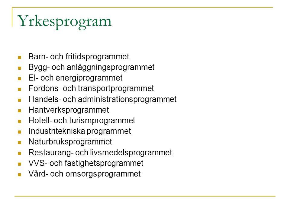 Yrkesprogram Barn- och fritidsprogrammet Bygg- och anläggningsprogrammet El- och energiprogrammet Fordons- och transportprogrammet Handels- och admini