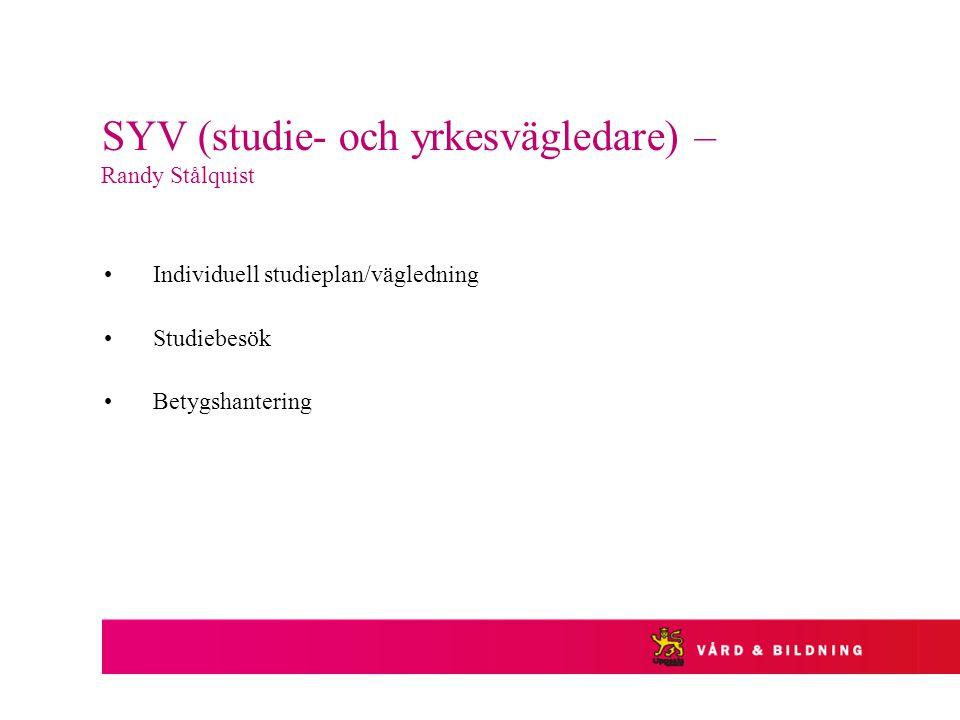 SYV (studie- och yrkesvägledare) – Randy Stålquist Individuell studieplan/vägledning Studiebesök Betygshantering