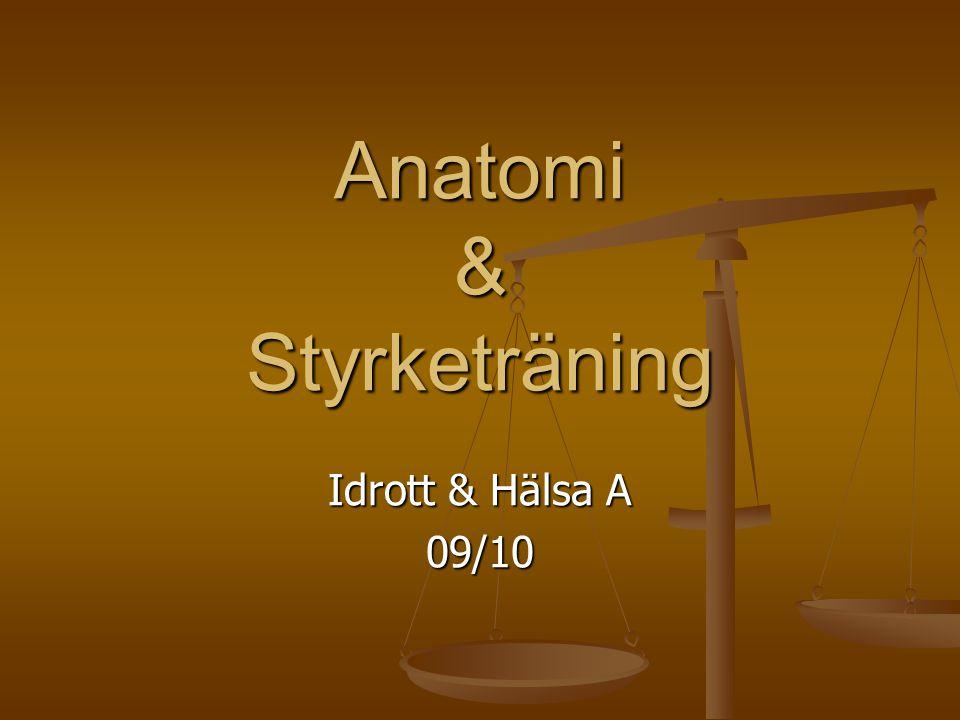 Anatomi & Styrketräning Idrott & Hälsa A 09/10