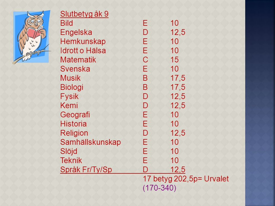 Slutbetyg åk 9 BildE10 EngelskaD12,5 HemkunskapE10 Idrott o HälsaE10 MatematikC15 SvenskaE10 MusikB17,5 BiologiB17,5 FysikD12,5 KemiD12,5 GeografiE10