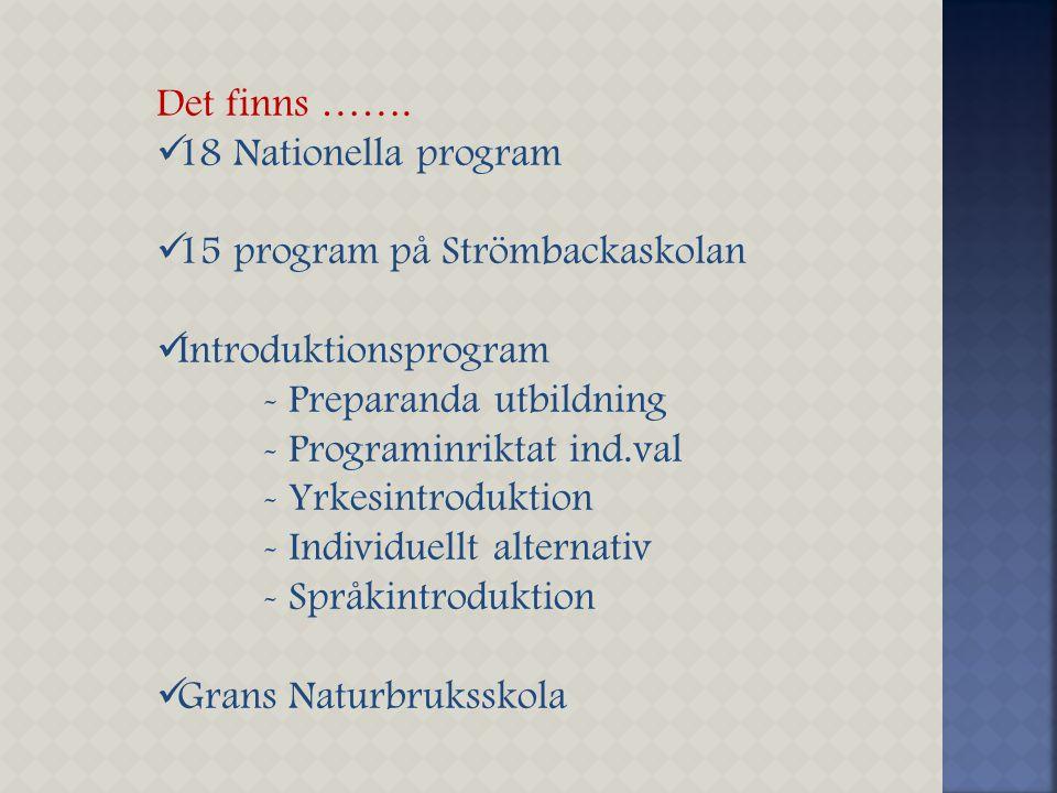 Det finns ……. 18 Nationella program 15 program på Strömbackaskolan Introduktionsprogram - Preparanda utbildning - Programinriktat ind.val - Yrkesintro