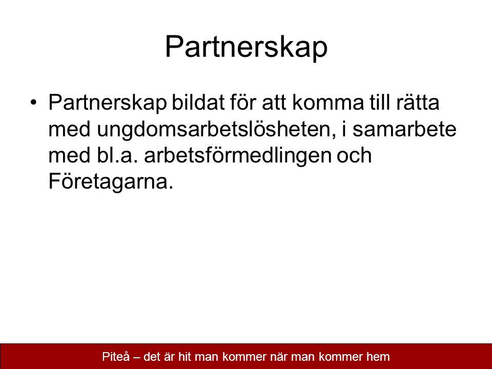 Partnerskap Partnerskap bildat för att komma till rätta med ungdomsarbetslösheten, i samarbete med bl.a. arbetsförmedlingen och Företagarna. Piteå – d