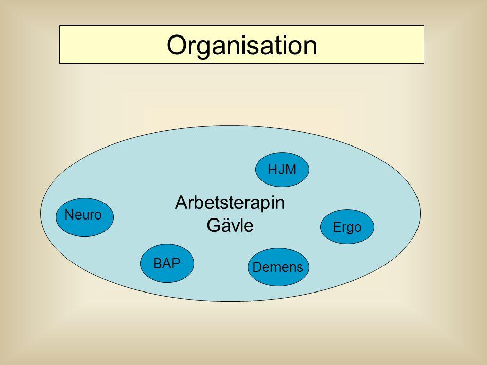 Arbetsterapin Gävle HJM Organisation Ergo BAP Neuro Demens