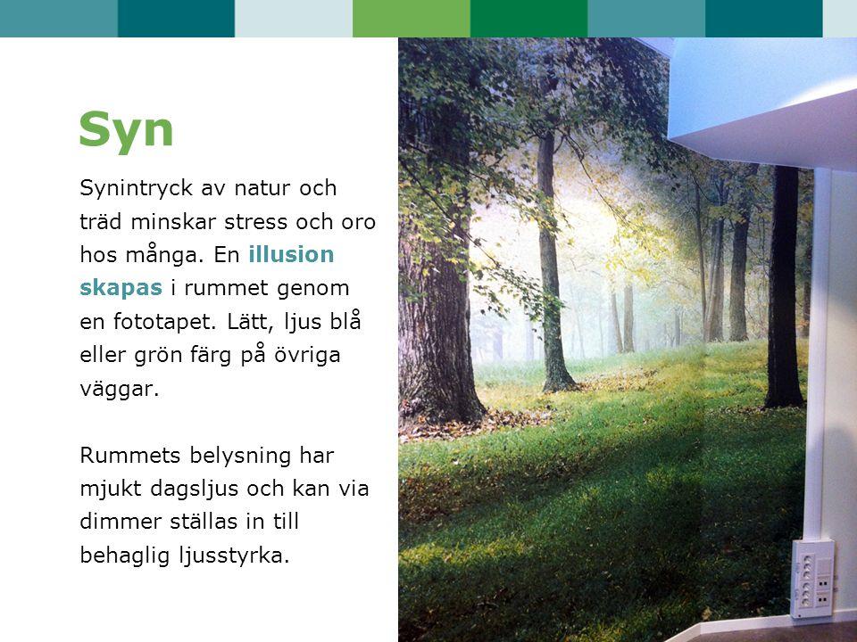 Syn Synintryck av natur och träd minskar stress och oro hos många. En illusion skapas i rummet genom en fototapet. Lätt, ljus blå eller grön färg på ö