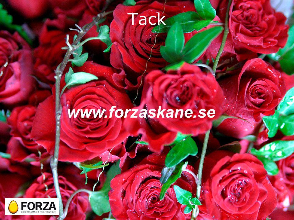 Tack www.forzaskane.se