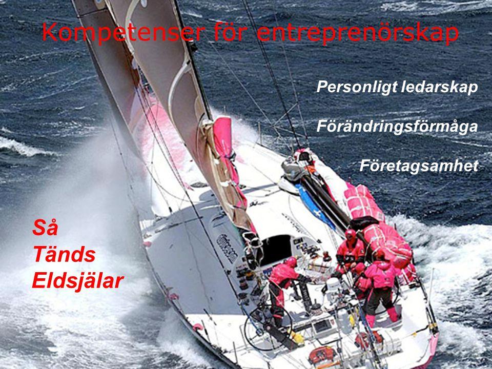 Kompetenser för entreprenörskap Personligt ledarskap Förändringsförmåga Företagsamhet Så Tänds Eldsjälar