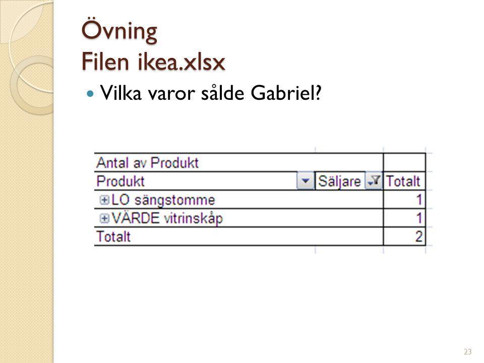 23 Övning Filen ikea.xlsx Vilka varor sålde Gabriel?