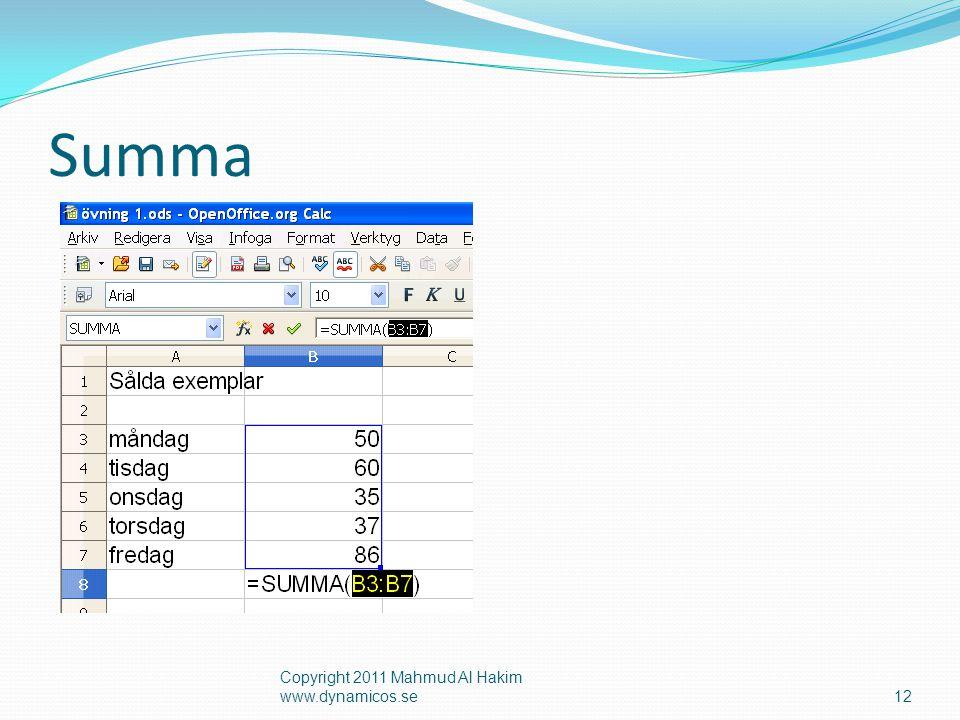 Summa Copyright 2011 Mahmud Al Hakim www.dynamicos.se12