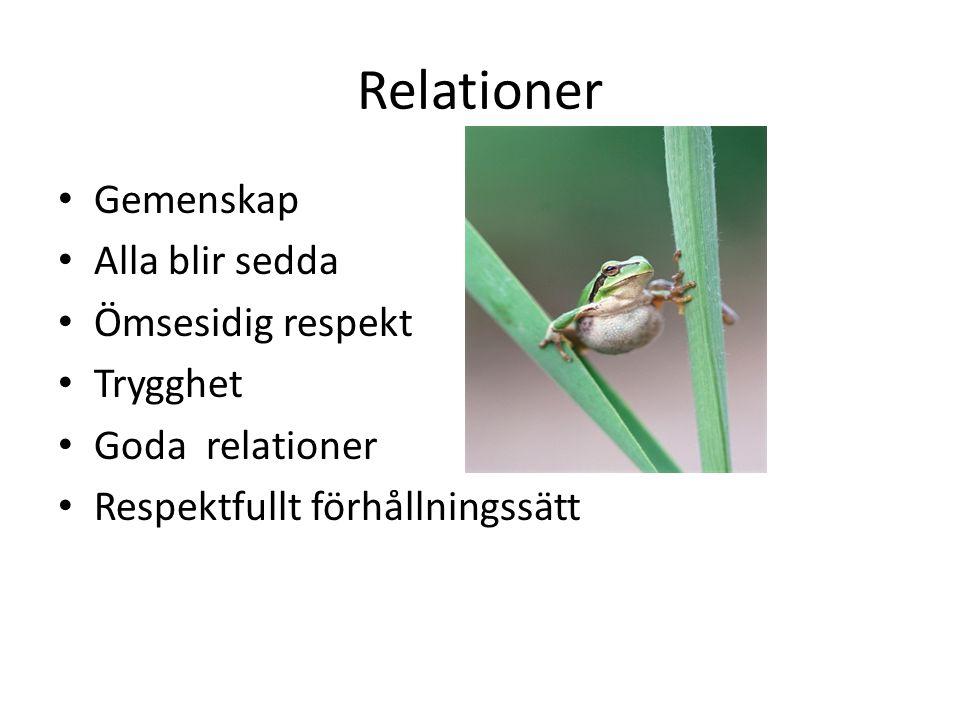 Relationer Gemenskap Alla blir sedda Ömsesidig respekt Trygghet Goda relationer Respektfullt förhållningssätt