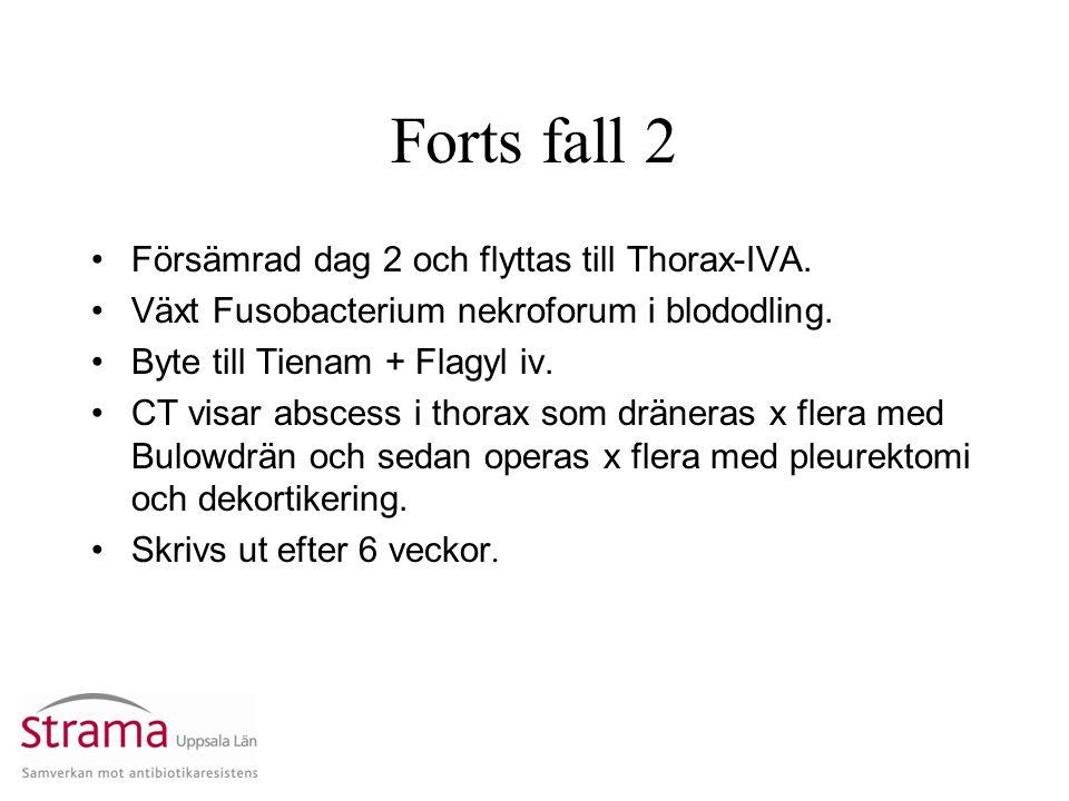 Forts fall 2 Försämrad dag 2 och flyttas till Thorax-IVA. Växt Fusobacterium nekroforum i blododling. Byte till Tienam + Flagyl iv. CT visar abscess i