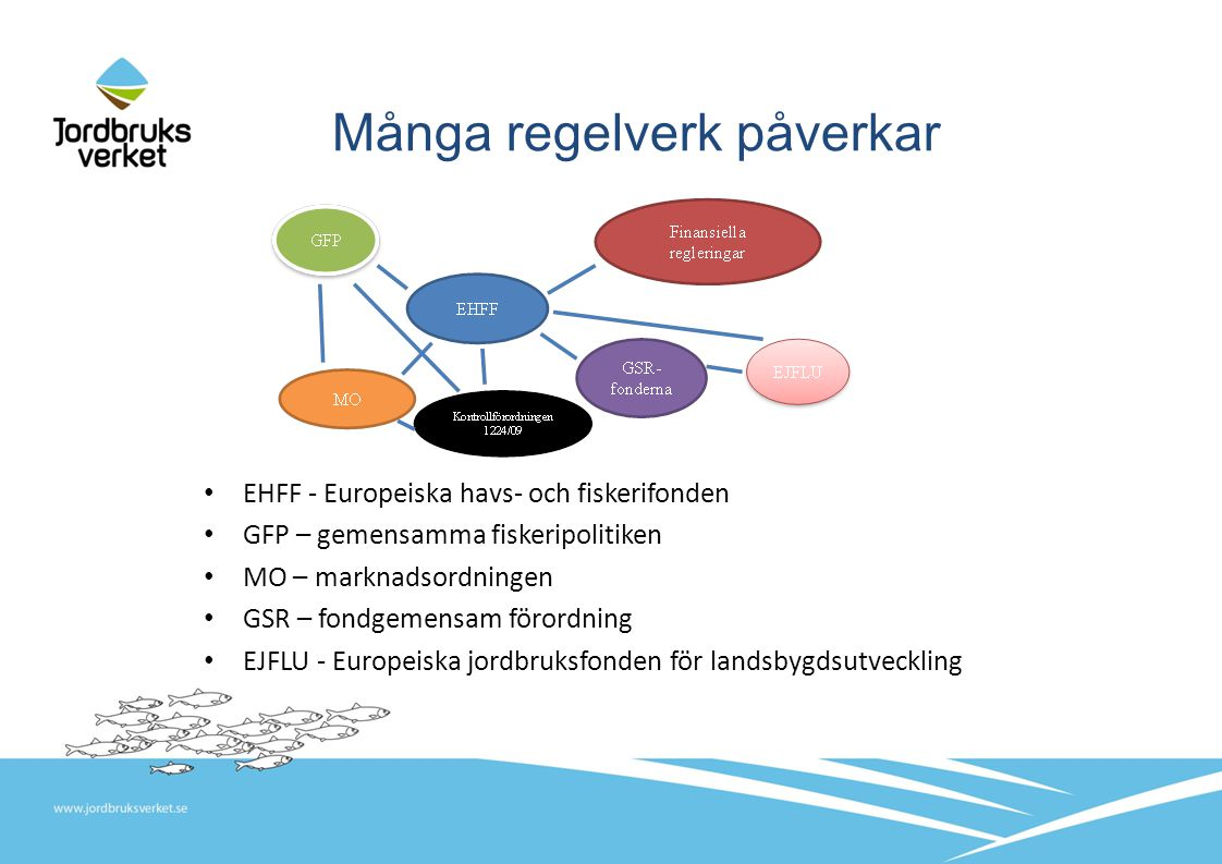 Många regelverk påverkar EHFF - Europeiska havs- och fiskerifonden GFP – gemensamma fiskeripolitiken MO – marknadsordningen GSR – fondgemensam förordning EJFLU - Europeiska jordbruksfonden för landsbygdsutveckling