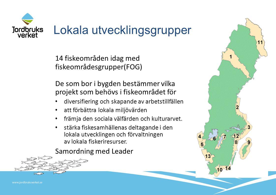 Lokala utvecklingsgrupper 14 fiskeområden idag med fiskeområdesgrupper(FOG) De som bor i bygden bestämmer vilka projekt som behövs i fiskeområdet för diversifiering och skapande av arbetstillfällen att förbättra lokala miljövärden främja den sociala välfärden och kulturarvet.