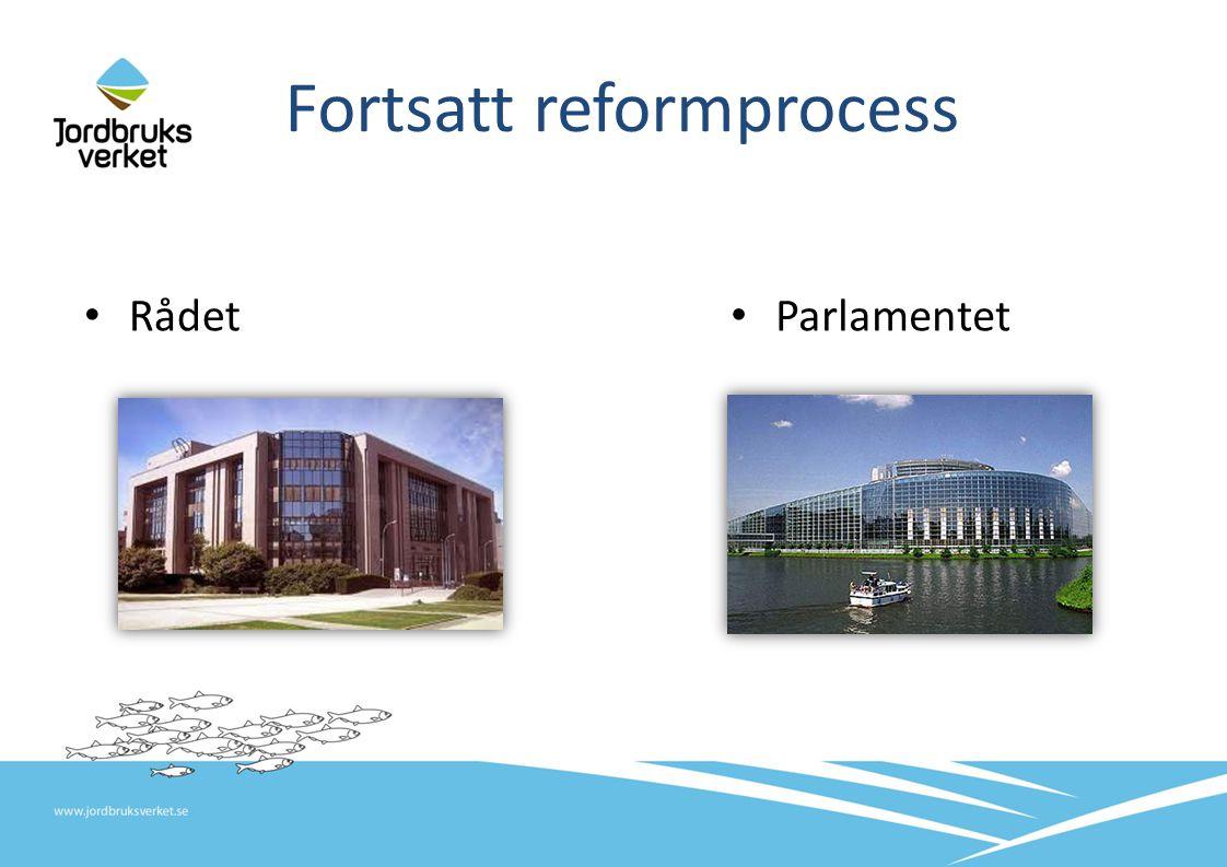 Fortsatt reformprocess Rådet Parlamentet