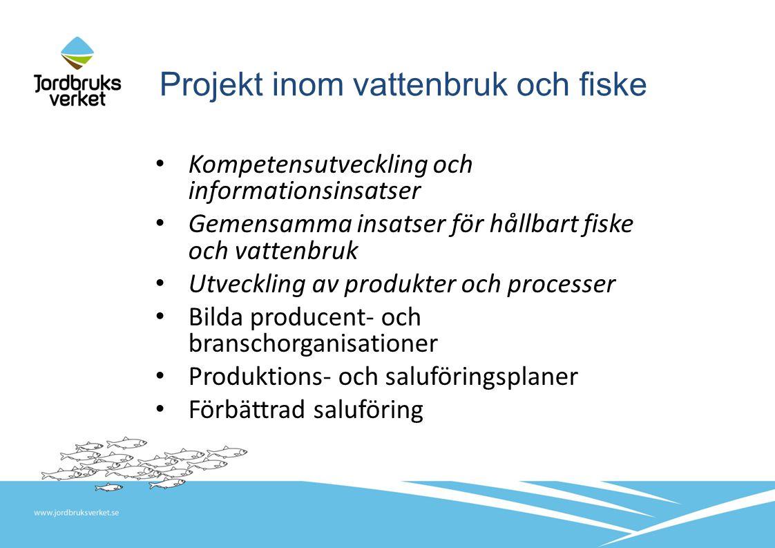 Projekt inom vattenbruk och fiske Kompetensutveckling och informationsinsatser Gemensamma insatser för hållbart fiske och vattenbruk Utveckling av produkter och processer Bilda producent- och branschorganisationer Produktions- och saluföringsplaner Förbättrad saluföring