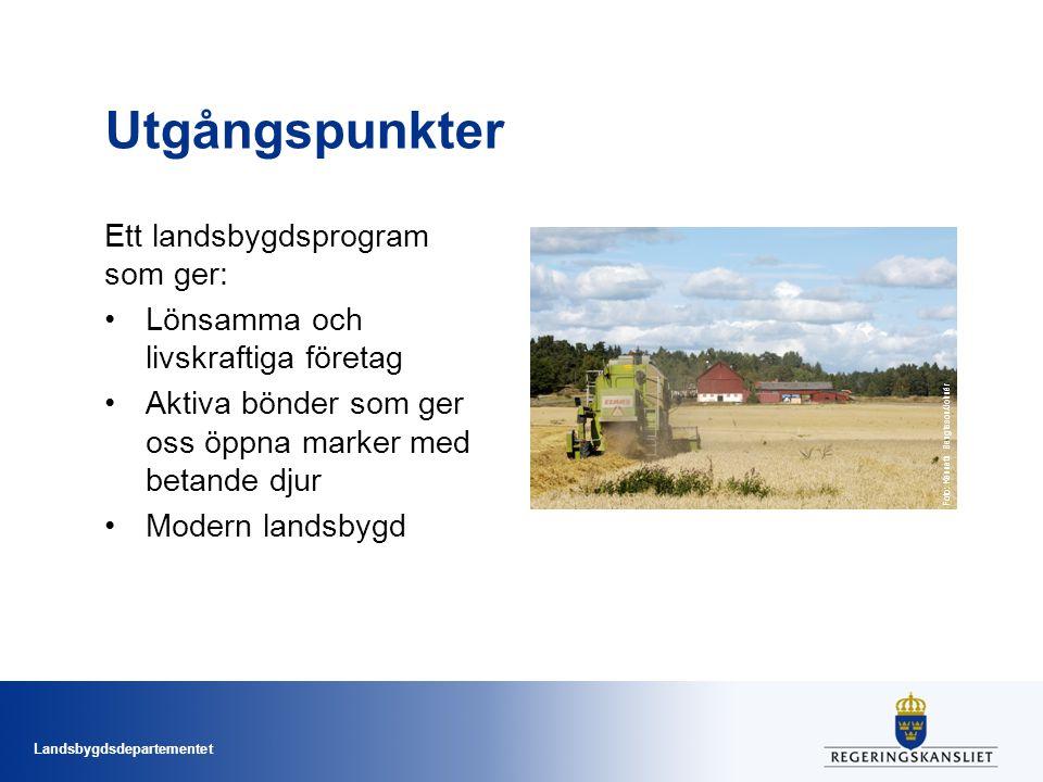 Landsbygdsdepartementet Utgångspunkter Ett landsbygdsprogram som ger: Lönsamma och livskraftiga företag Aktiva bönder som ger oss öppna marker med bet