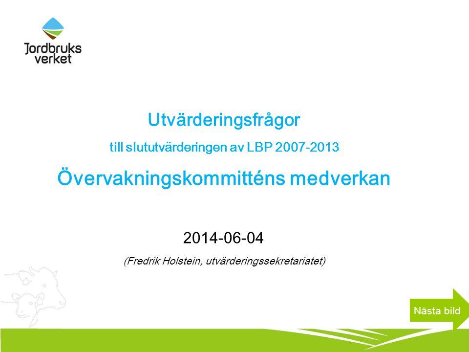 Utvärderingsfrågor till slututvärderingen av LBP 2007-2013 Övervakningskommitténs medverkan 2014-06-04 (Fredrik Holstein, utvärderingssekretariatet) N