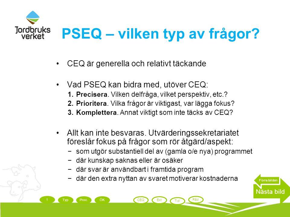 PSEQ – vilken typ av frågor? CEQ är generella och relativt täckande Vad PSEQ kan bidra med, utöver CEQ: 1.Precisera. Vilken delfråga, vilket perspekti