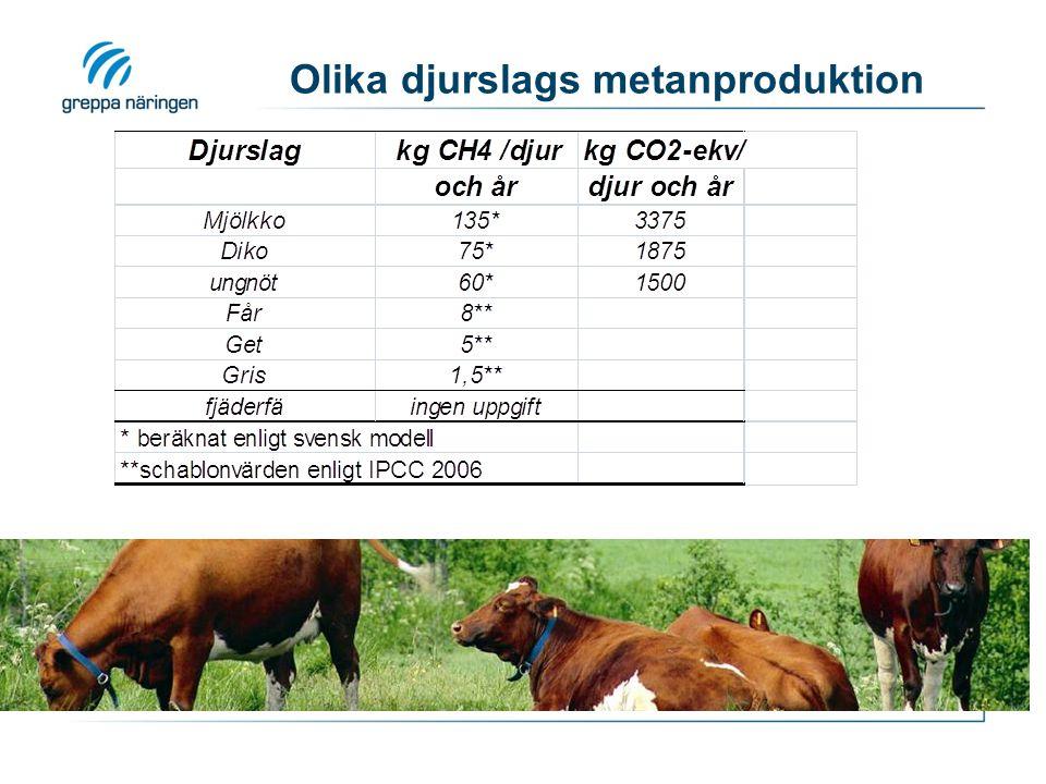 Datainsamling för djurgård Vilka varor/tjänster.Hur mycket (kg, l, kWh…).