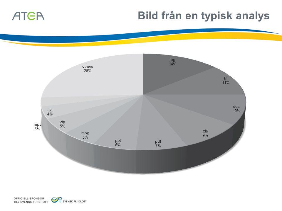 Bild från en typisk analys