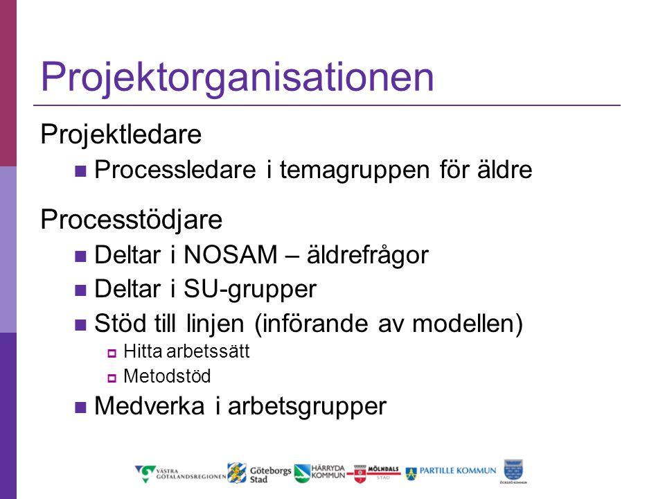 Projektorganisationen Projektledare Processledare i temagruppen för äldre Processtödjare Deltar i NOSAM – äldrefrågor Deltar i SU-grupper Stöd till li