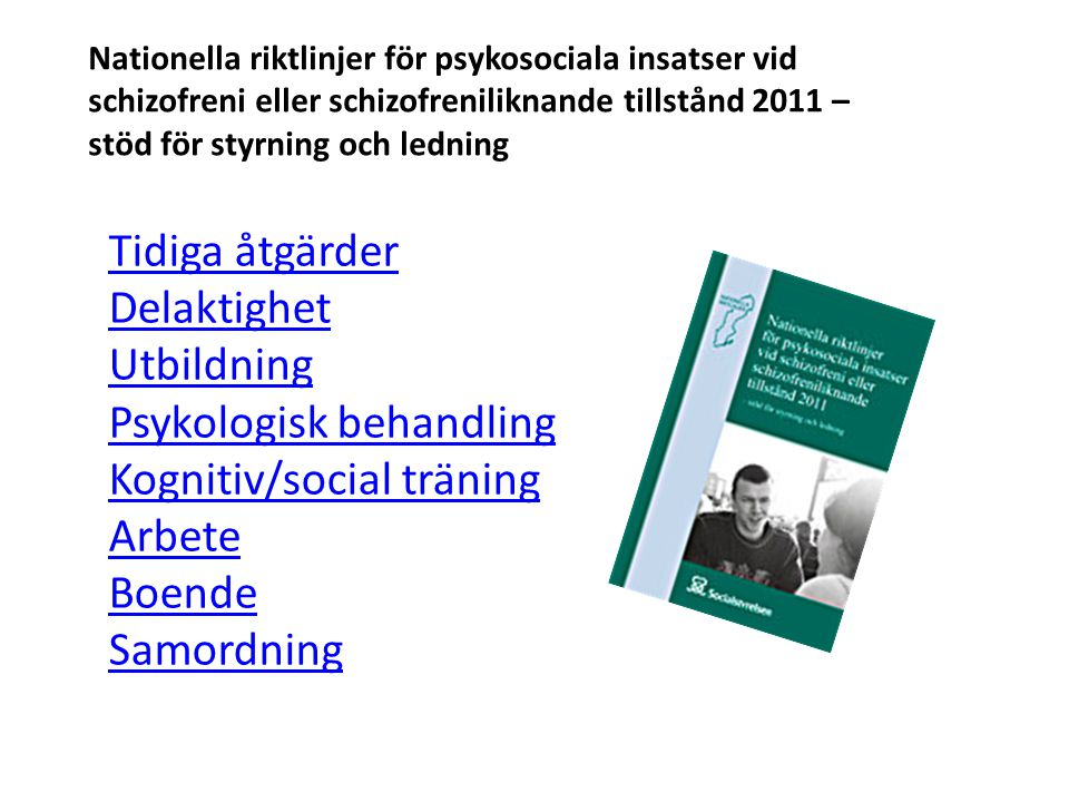 Tidiga åtgärder Delaktighet Utbildning Psykologisk behandling Kognitiv/social träning Arbete Boende Samordning Nationella riktlinjer för psykosociala insatser vid schizofreni eller schizofreniliknande tillstånd 2011 – stöd för styrning och ledning