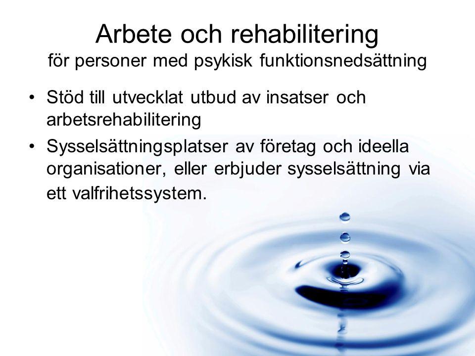 Arbete och rehabilitering för personer med psykisk funktionsnedsättning Stöd till utvecklat utbud av insatser och arbetsrehabilitering Sysselsättningsplatser av företag och ideella organisationer, eller erbjuder sysselsättning via ett valfrihetssystem.