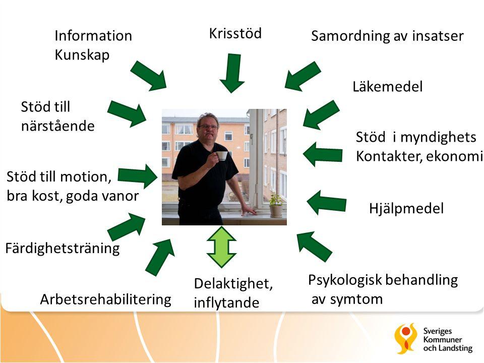 Färdighetsträning Stöd i myndighets Kontakter, ekonomi Psykologisk behandling av symtom Läkemedel Information Kunskap Krisstöd Delaktighet, inflytande