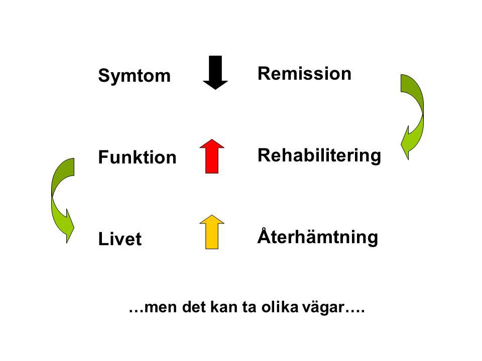 Livet Symtom Funktion Remission Återhämtning Rehabilitering …men det kan ta olika vägar….