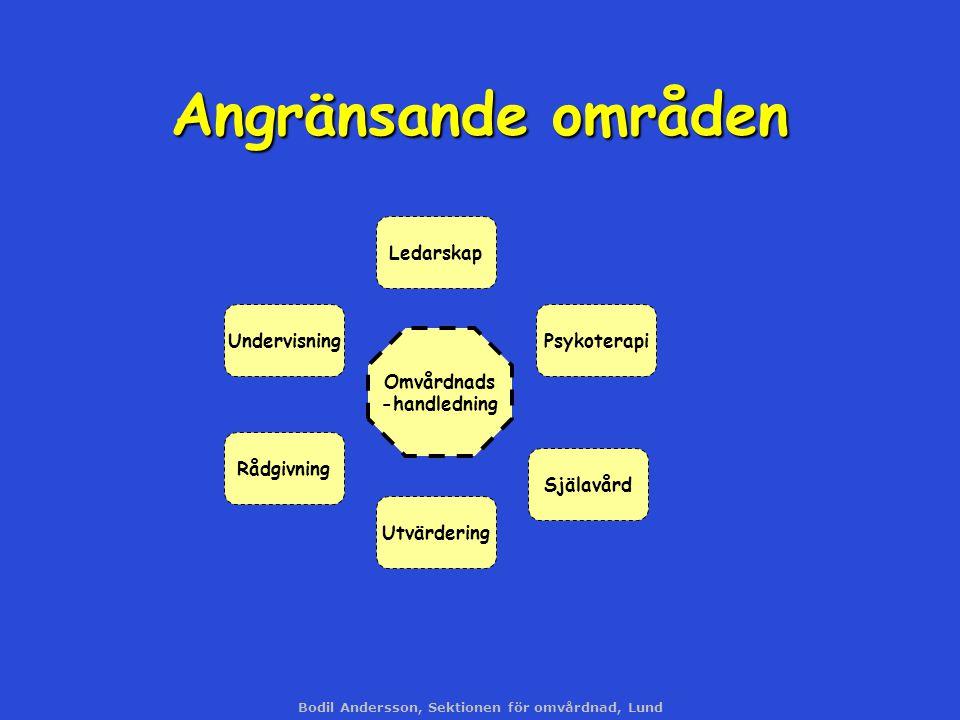 Bodil Andersson, Sektionen för omvårdnad, Lund Angränsande områden Omvårdnads -handledning Undervisning Utvärdering Ledarskap Rådgivning Själavård Psy