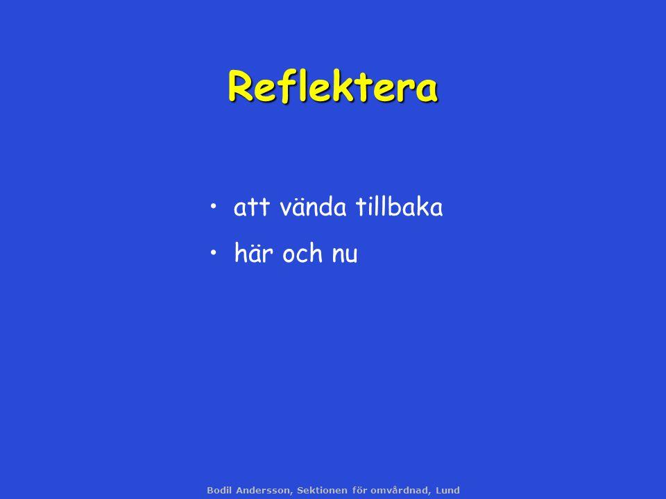Bodil Andersson, Sektionen för omvårdnad, Lund Reflektera att vända tillbaka här och nu