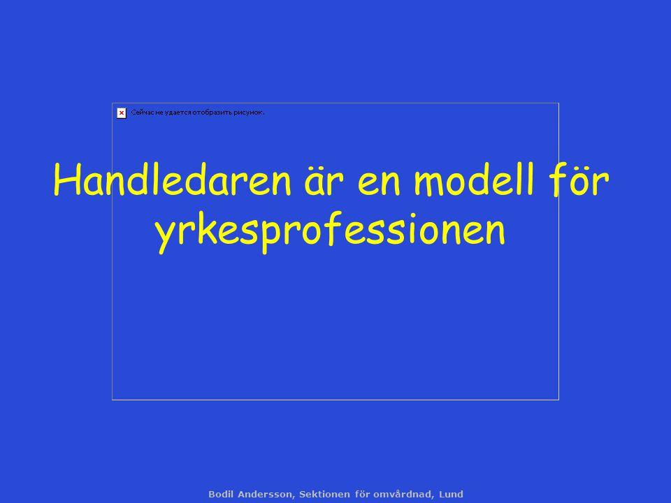 Bodil Andersson, Sektionen för omvårdnad, Lund Handledaren är en modell för yrkesprofessionen