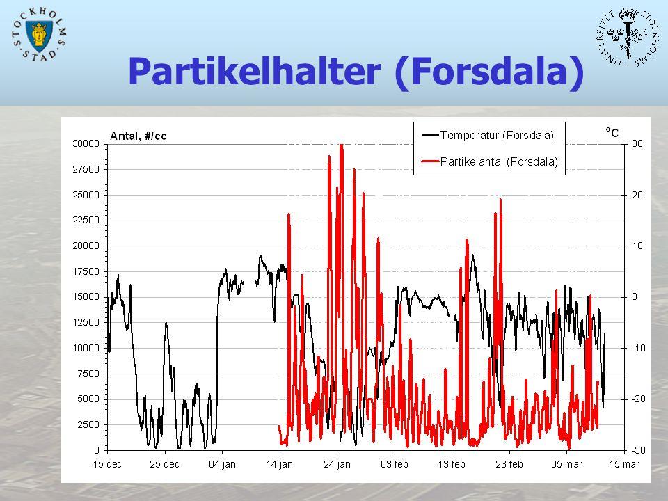 Partikelhalter (Forsdala)